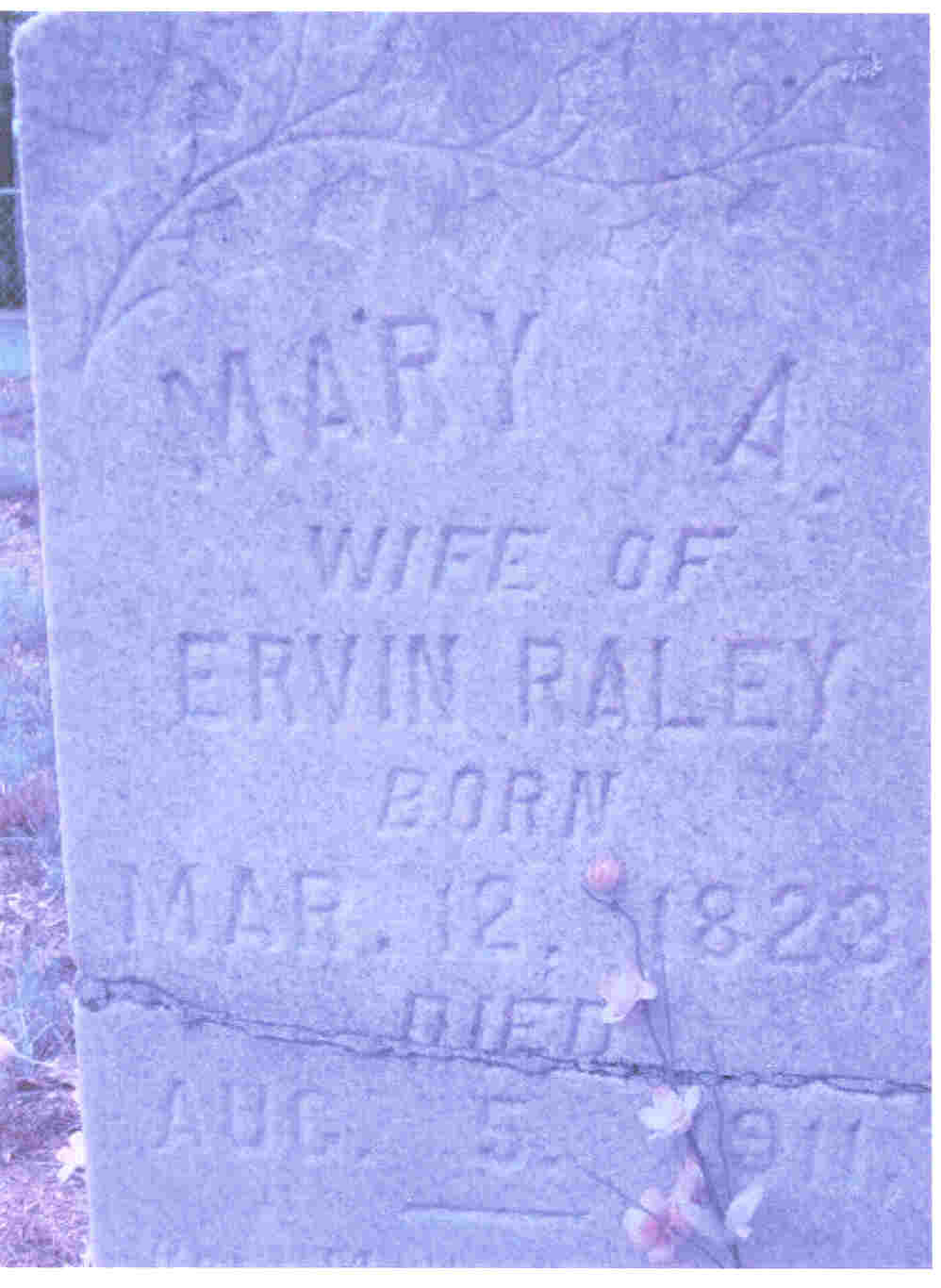 Mary A. Raley wife of Ervin Raley Mar. 12, 1823 -Aug 5, 1911